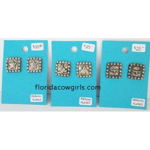 Sterling Plated Square Berry Western Post Earrings